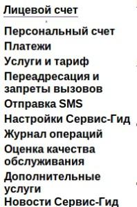 Lichny-j-kabinet-MegaFon-198x300.jpeg