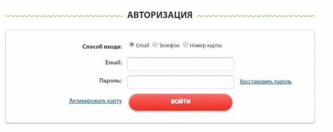 budzdorov-lk.jpg