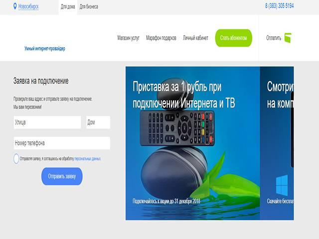 sibirskie_seti1.jpg