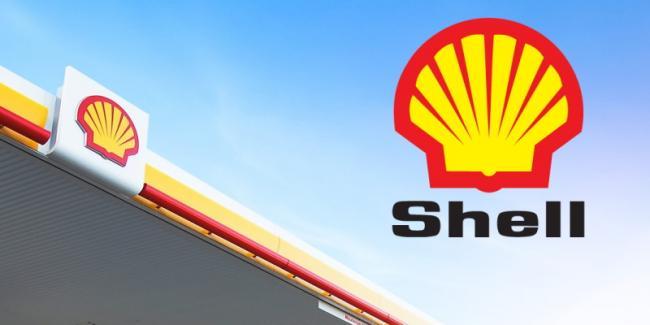 shell-pecten-with-sky.jpeg