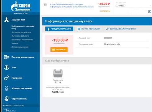 smorodina-gaz-cabinett-3.png