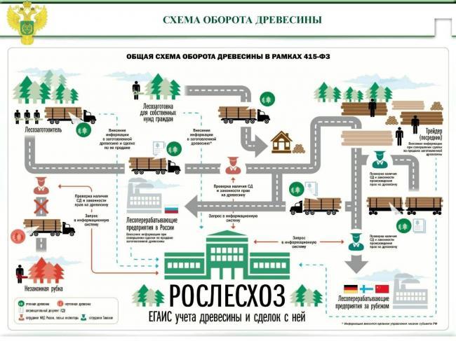 egais-les-ofitsialnyiy-sayt-lichnyiy-kabinet-04.jpg