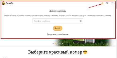 beeline-lichnyy-kabinet-3.jpg