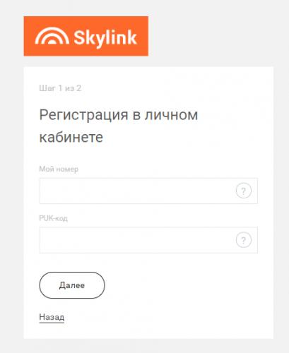 skyling-lickab5-463x566.jpg