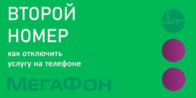 site-megafon13.png
