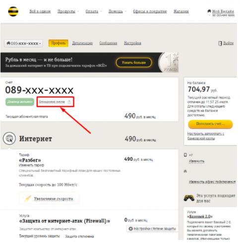 otklyuchit-dom-internet-bil6.png