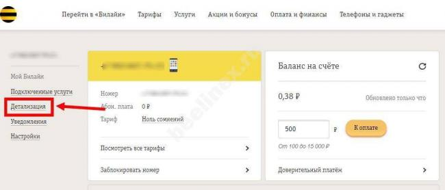 detalizaciya-zvonkov-1.jpg