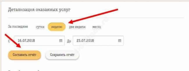 detalizaciya-zvonkov-2.jpg