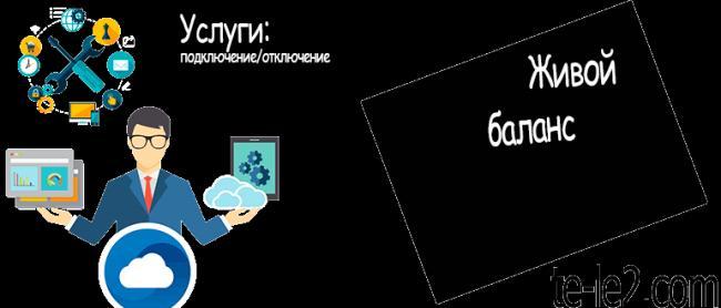 zhivoj-balans-770x330.png