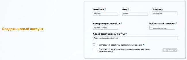 lichnyjj-kabinet-samaraehnergo-vkhod-registraciya-vosstanovlenie-parolya_5d079c24a8408.png