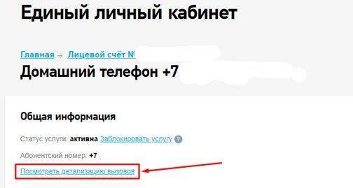 detalizaciya-zvonkov_result.jpg