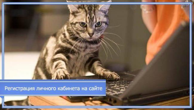 gorvodokanal-smolensk-avariynaya-telefon.jpg