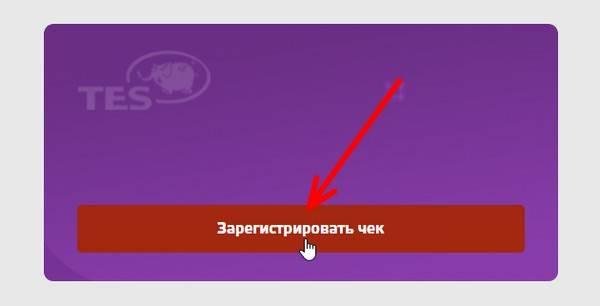zaregistrirovat-chek-1.jpg