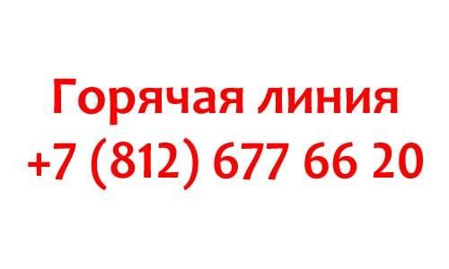 Kontakty-Well-Telecom.jpg